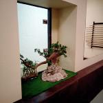 Tree_800